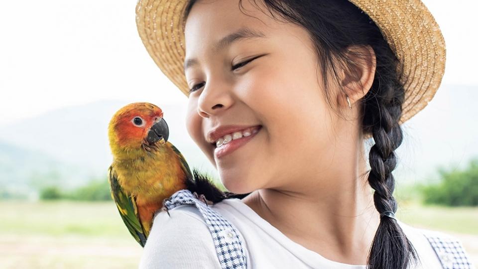Entenda como ensinar seus filhos a ter respeito aos animais