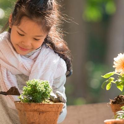 5 dicas para criar uma horta para crianças em casa